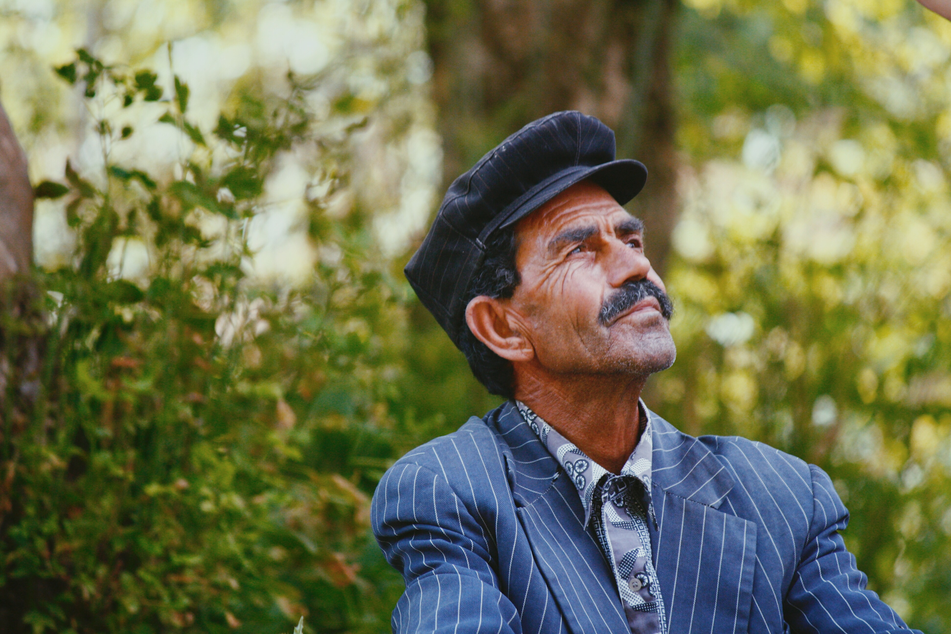 The World Health Organisation global campaign to combat ageism