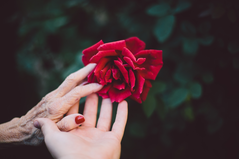 « Les vieux, c'est comme les enfants » : pour en finir avec l'infantilisation des personnes âgées